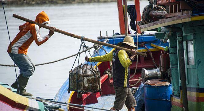 印尼渔民这样捕鱼