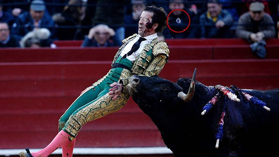 独眼斗牛士遭公牛重击 假眼瞬间飞出