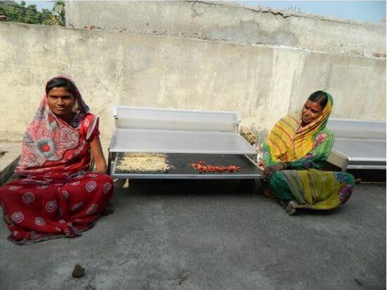 印度科学家为农民打造出廉价干燥机 帮助储存食物
