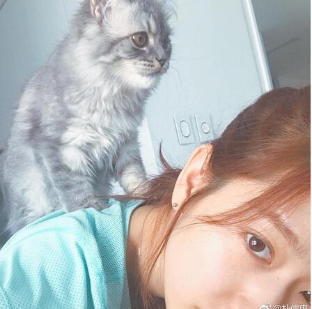 朴信惠晒居家照素颜清纯 惨被猫咪欺负骑脖子