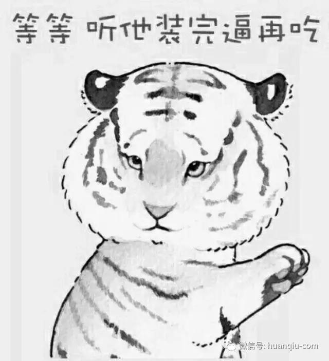 环环目击!又有人在野生动物园下车,老虎这次躲过一劫!