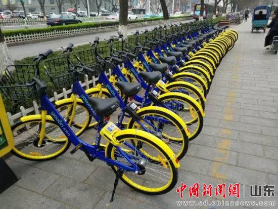 """共享单车""""进军""""淄博 有望解决城市旅游最后一公里"""