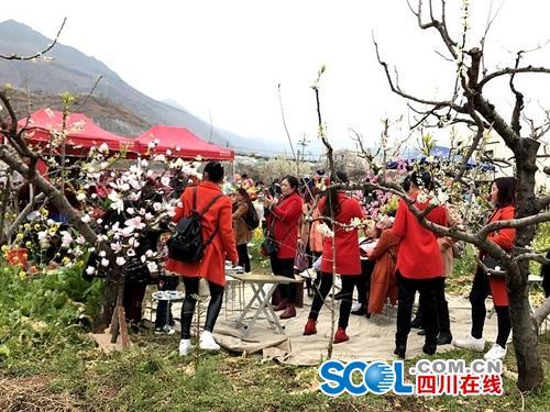 花卉节引爆汉源乡村旅游经济