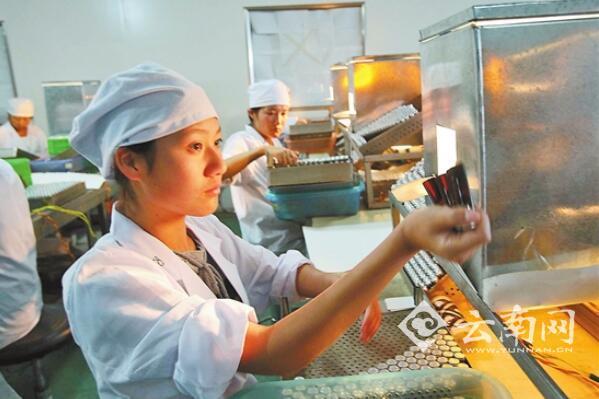 云南省医药工业投资持续增长