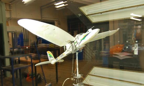 加持变形翼和人工智能 这只无人机可以像鸟一样俯冲着陆