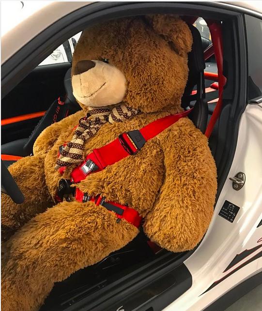 德国超跑发烧友晒图 巨型泰迪熊与超跑共享时光