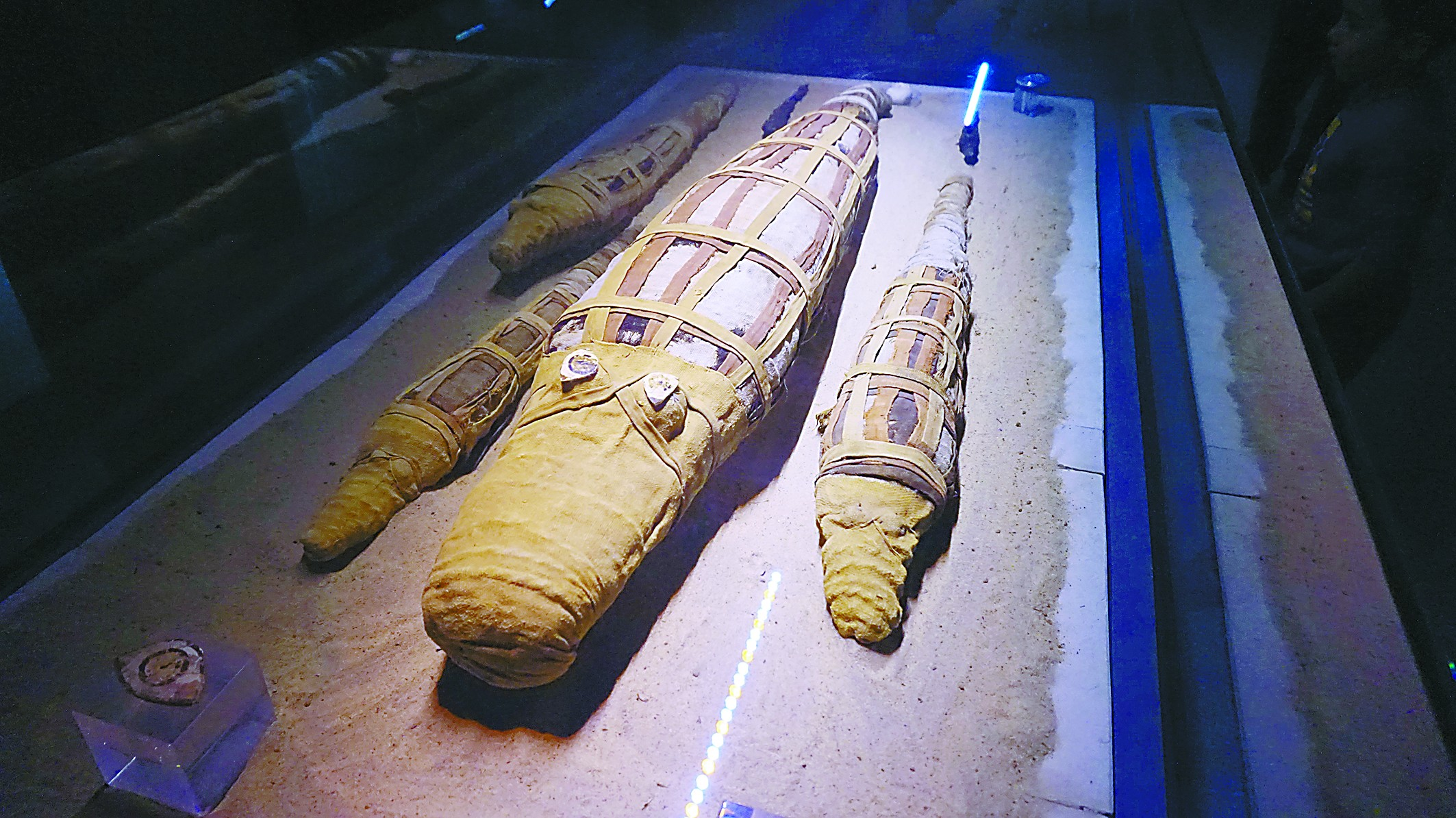 在埃及参观鳄鱼木乃伊博物馆