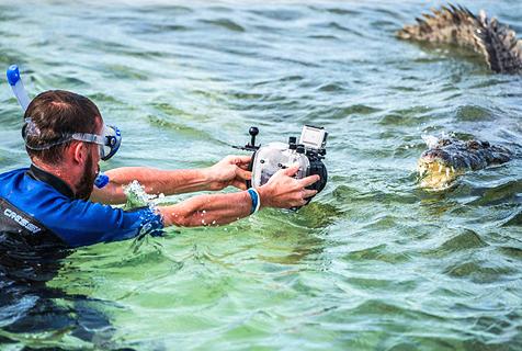 """墨西哥两游客水下与鳄鱼""""亲密""""面对面"""