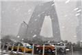 北京三月飞雪