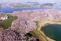 航拍贵州万亩花海 湖畔遍布春色