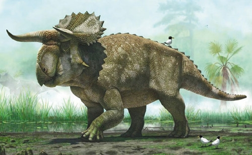 恐龙知识彻底被颠覆:人类压根就错了!