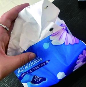 维达官方旗舰店被曝抽纸粘着苍蝇 客服称不清楚情况