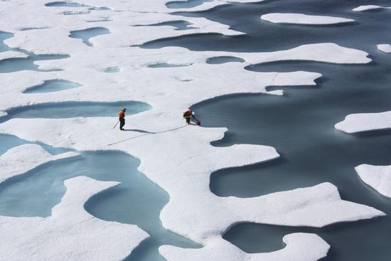 海冰减少或致北冰洋陷入过度捕捞绝境