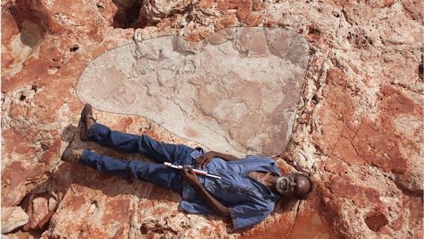 1.7米史上最大脚印:刷新恐龙体型认知