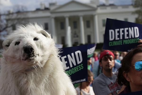 """美环保人士集会抗议特朗普气候政策 """"北极熊""""到场助阵"""