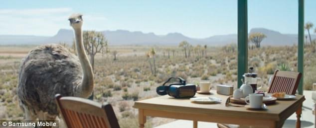 三星Gear VR创意广告:鸵鸟也飞翔