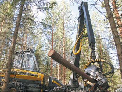 芬欧汇川公司的伐木机正在一处伐木场作业.本报记者 管克江摄