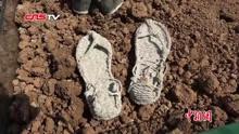 80双陶鞋亮相南京大屠杀纪念馆寄哀思