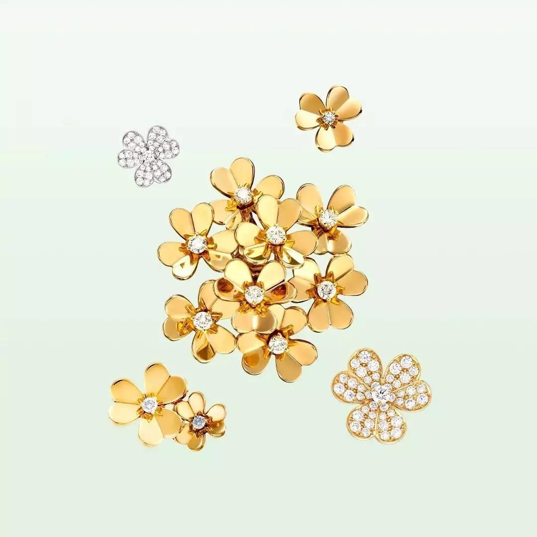 花朵整体的造型结构和花瓣的朝向均