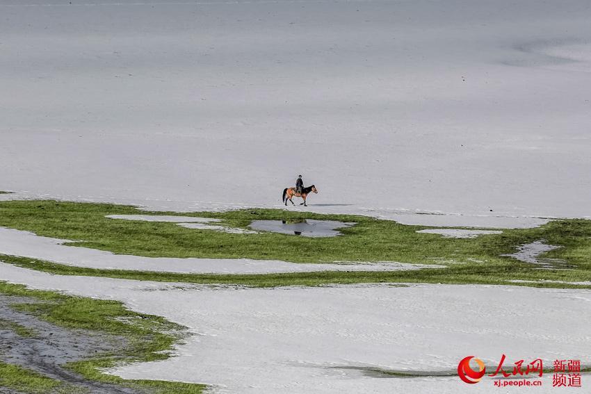 蓝天白云下的牛羊,毡房为本来就很美的草原增添了几分灵动.