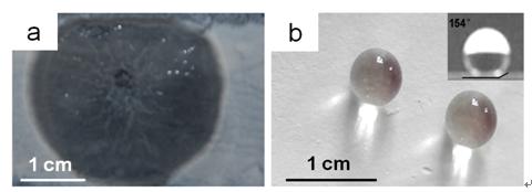中科院成功研制纳米自清洁涂料 可节省50%人力成本