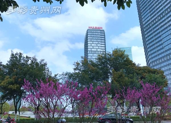 """冰雹再见 晴天回归 贵州这个""""春天""""是真的"""