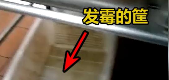 俏江南黑厨再曝脏乱问题:蟑螂卧餐盘 老鼠屎遍布