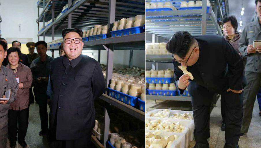 金正恩蘑菇厂视察亲嗅蘑菇 总理朴凤柱首次陪同