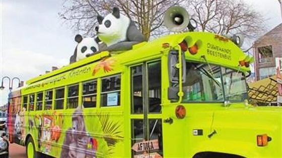 荷兰人:大熊猫是我们尊贵的客人 已期待已久