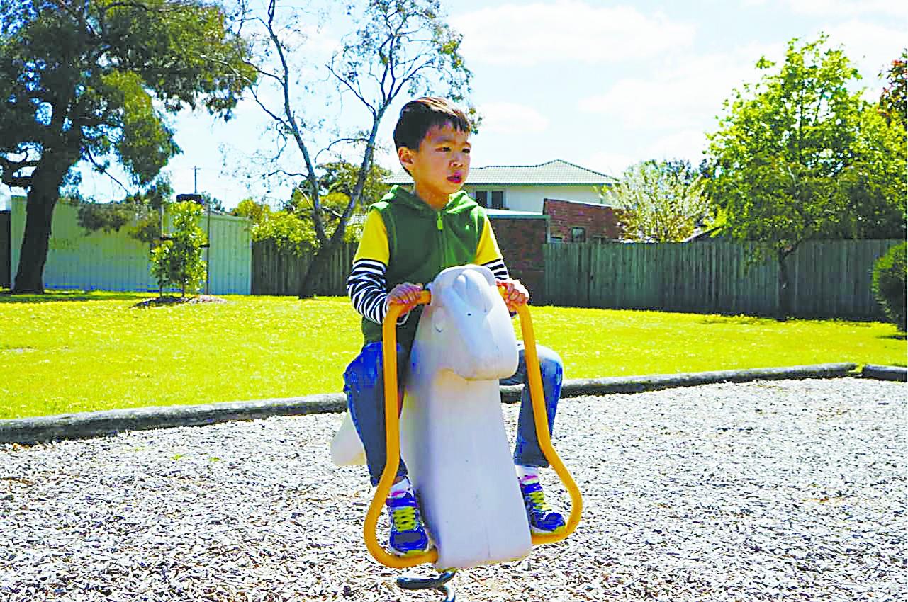 澳大利亚人巧用木屑防尘、防滑