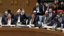 安理会未通过英美法叙化武问题决议草案
