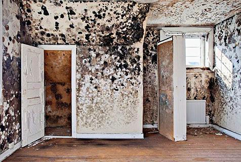 实拍国外预售房屋:内部装修古怪离奇