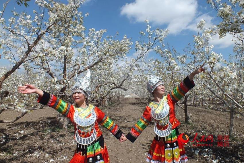 见证了首届铁门关市博古其镇梨花文化旅游节暨创建国家级特色小镇的
