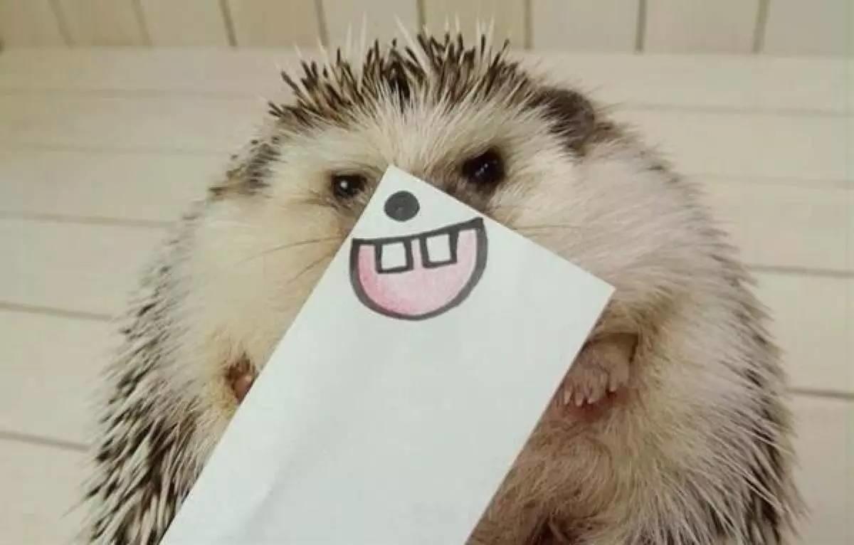英科学家:大笑是一味良药,但这样笑可能是痴呆前兆......