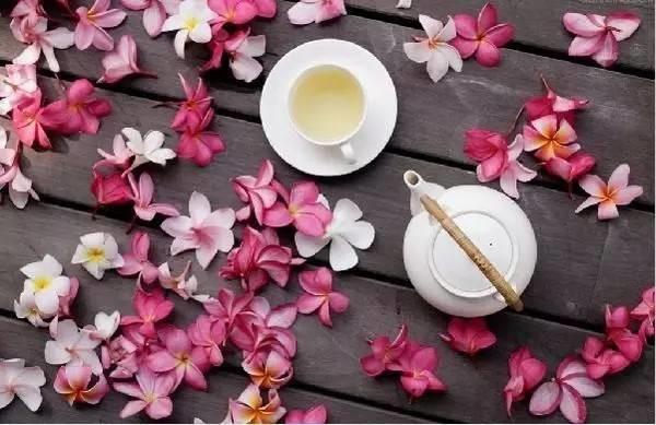 中医说   你的身体最爱花,花季花养生!