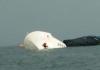 海警3062船在广州撞货船沉没 曾在黄岩岛执法
