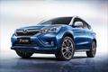 补贴退坡,自主品牌如何冲击新能源汽车市场?