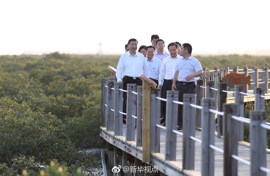 """日本工程师在台铜像被""""砍头""""照片曝光"""