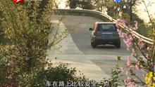 """宁海屿南公路:昔日""""孤岛""""变""""热岛"""""""
