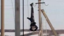 实拍俄电工高空作业时触电 倒挂逾1小时终获救