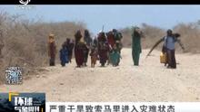 严重干旱致索马里进入灾难状态
