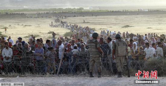 德媒:数千疑似塔利班成员或借难民潮混入德国