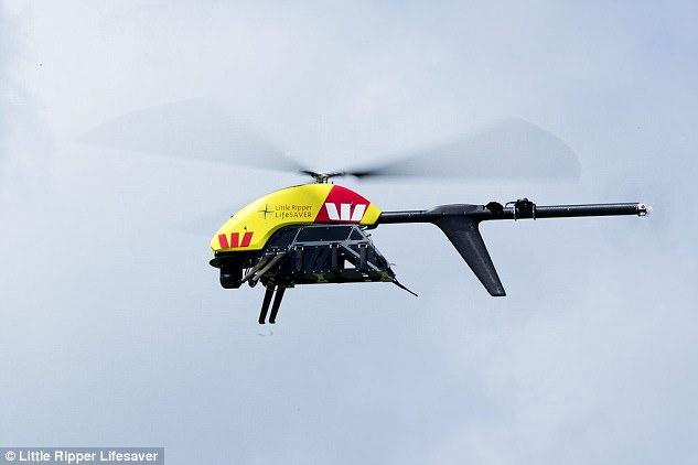 澳大利亚启用无人机探测鲨鱼 有望减少袭人事故