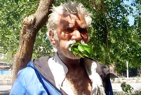 巴基斯坦男子吃树叶树枝持续25年