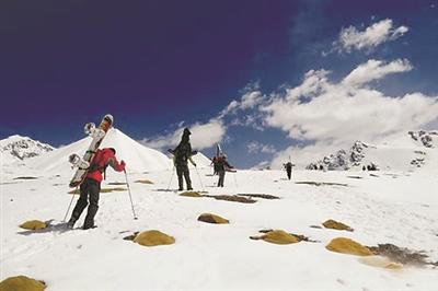 岗什卡国际滑雪登山挑战赛下月开赛