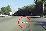 惊险!美4岁女童从车尾跌落