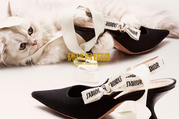 【单品】舒服又美丽的猫跟鞋 让你变成赫本一样的猫少女