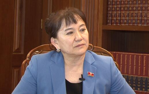 """吉尔吉斯斯坦议员:""""一带一路""""有助推动世界经济 消除悲观论调"""