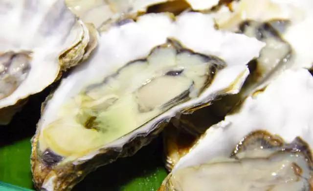 丹麦海岸长满生蚝 驻华使馆紧急求助中国吃货?