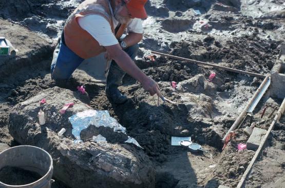 人类最早在13万年前到达北美